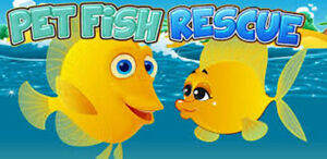 Fresh Water Fish & Salt Water Fish Rehoming/ Rescue Free