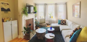 1 room in 2 bed - big, beautiful, available short or long term.