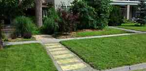 Lawn care services and landscaping London Ontario image 9