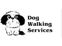 Dog Walking Services/ Puppy & Cat Visits - Penicuik Area (Penicuik, Bilston, Roslin & Loanhead)