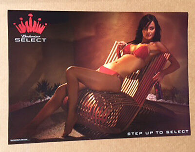 Budweiser Select Sexy Girl in Bikini Poster  BEER -NEW-