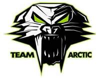 Looking for blown up Arctic cats