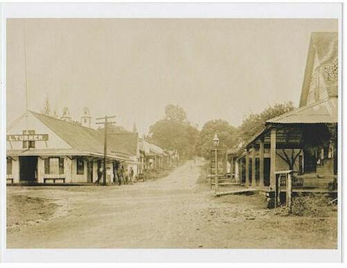 DOWNTOWN HILO 1890
