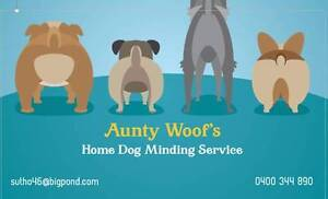 Aunty Woof's Home Dog Minding Service Geelong West Geelong City Preview