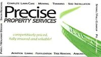 Precise  Property Services - Great Spring Promo at $49.99