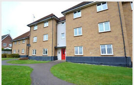 two bedroom flat for rent Newbury Park