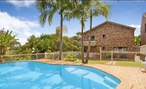 Great Share House Dee Why Manly Area Preview