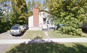 4 bedroom sublet, right next to UNB, May-August!
