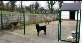 Fence in dangerous dogs