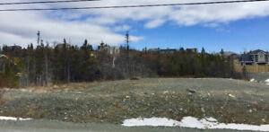 Lot for Sale in Topsail Pond Area.