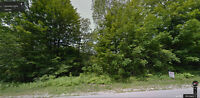 A piece of paradise in Southampton - 2.5 acre serviced lot