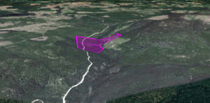 Placer Gold Claims for Sale on TROUT CREEK: $3000