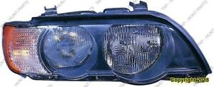 Head Lamp Driver Side Halogen White Turn Signal High Quality BMW X5 2000-2003