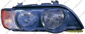 Head Light Driver Side Halogen White Turn Signal High Quality BMW X5 2000-2003