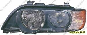 Head Light Passenger Side Halogen White Turn Signal High Quality BMW X5 2000-2003
