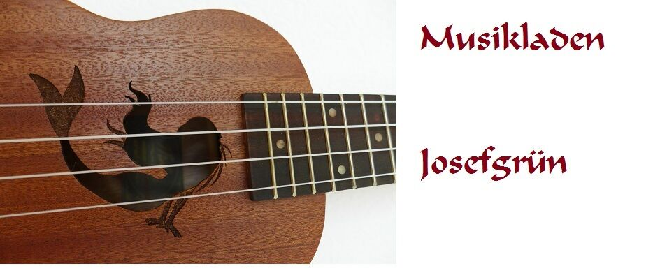 Musikladen Josefgruen