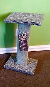 Kitty Scratching Post