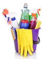 No Time To Clean Your Home?