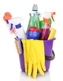 Domestic Cleaner required. Competitive Pay. Day time hours. Part Time. Self-Employed basis.