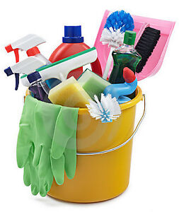 DUSTLESS SERVICES - Office Cleaning Lady