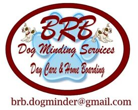BRB Dog Minding Services (BRB-DMS) - Doggy Day Care & Home Boarding Service