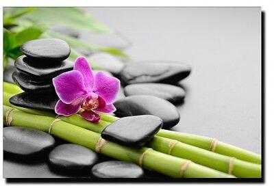 la p'tite boutique Zen