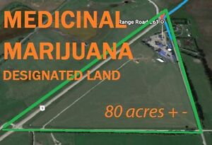 Medical Cannabis Designated Land For Sale