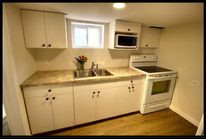 Furnished bsmt apartment sperate entrance near Humber College La