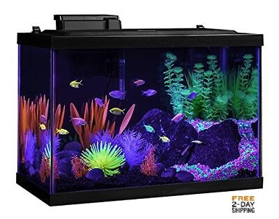 Glofish AQUARIUM KIT LED LIGHT TETRA 20 GALLON GLASS FISH TANK FREE 2 DAY SHIP