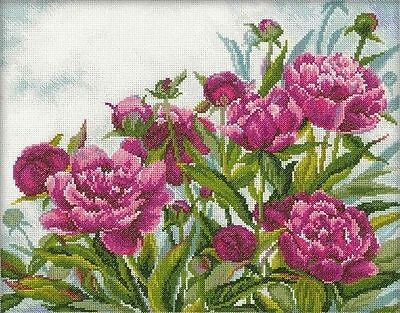 Rto Counted Cross Stitch Kit Peonies Flowers New