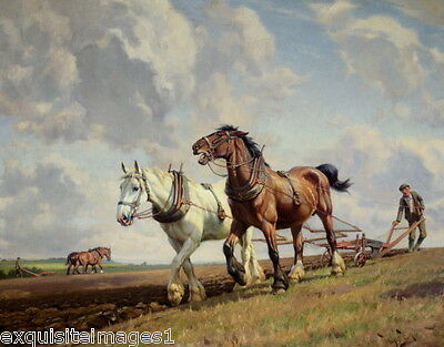 c1900 Barker~2 Harnessed Draft Heavy Horses Plowing Field~ NEW Large Note Cards