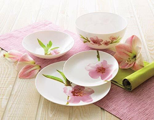 19 pc iris white dinnerware set unbreakable