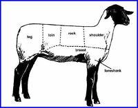Butcher Required for Lambs - Will Trade For Meat / Firewood or C