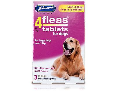 JOHNSONS 4 FLEAS TABLETS for LARGE DOG / OVER 11KG | 3 TREATMENT PACK KILLS FLEA