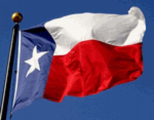 3x5 FT TX Texas Flag Koralex 2 Ply Poly Valley Forge Flag Se