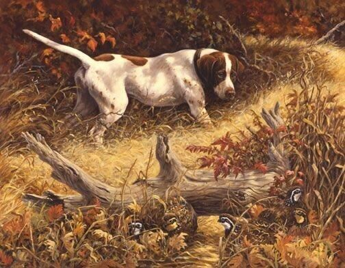 """""""English Pointer"""" Tapestry Throw & Pillow,Linda Picken Design,Manual Woodworkers"""