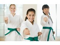 OPEN A KARATE CLUB NOW...CALLING BLACK /BROWN BELTS