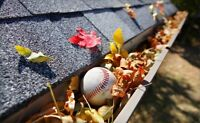 Fall Eaves Clean Up (Same Day Service)
