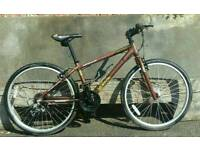 Ladies hybrid aluminium frame bike