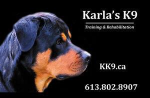 Karla's K9 Training & Rehabilitation