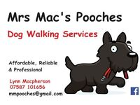 Mrs Mac's Pooches - Dog Walking Services in West Lothian - Affordable Reliable Professional