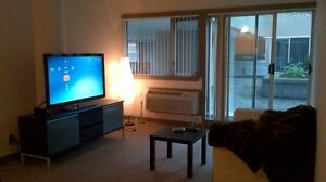 Awesome 1 Bedroom Apartment with Backyard - Rivulet Courtyard