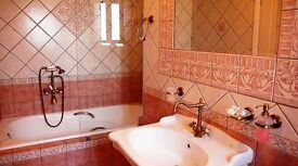 Professional TILER HANDYMAN/MARBLE FITTER - Andreas Malefakis-