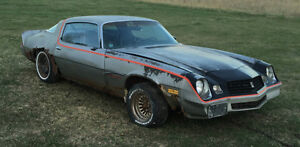 1979 Chevrolet Camaro Z28 Rally Sport Coupe (2 door)
