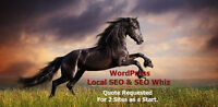 Local SEO & SEO WHiZ for WordPress - Quote for 2 sites