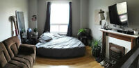 1 Furnished Room in Amazing Glebe apartment