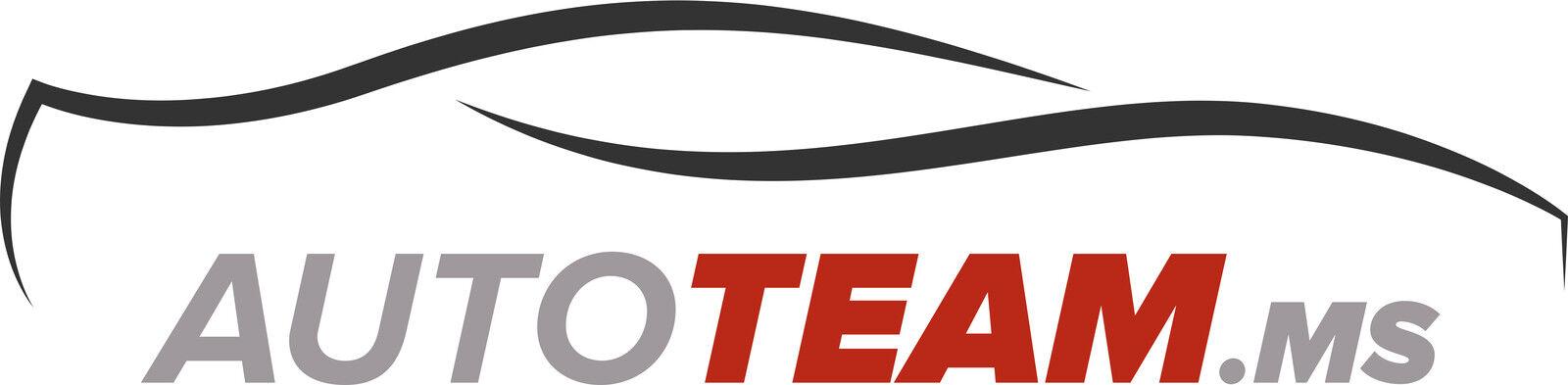 AutoTeam.MS Shop