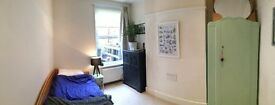 Beautiful single room in cosy family home