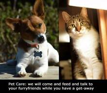 Serendipity Pet Projects Mareeba Tablelands Preview