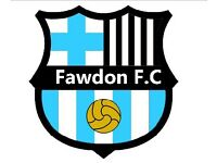 Fawdon F.C looking for new players for the 2016/17 season